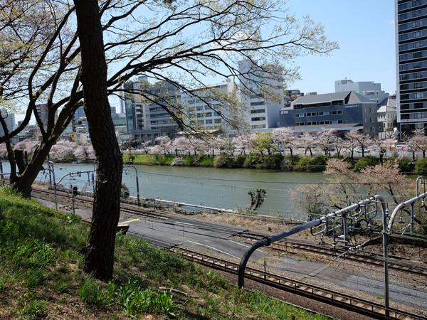 http://115.146.7.3/y/iidabashi/image/20190409-1.jpg